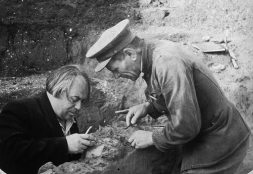 The Kostenki fossils were excavated in 1954 by a Russian team led by A. N. Rogachev (left) and are among the oldest for modern humans in Europe. (Photograph by the Peter the Great Museum of Anthropology and Ethnography.)