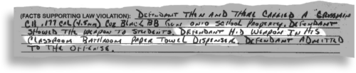 The charging document in a case against an 8-year-old at Lakewood