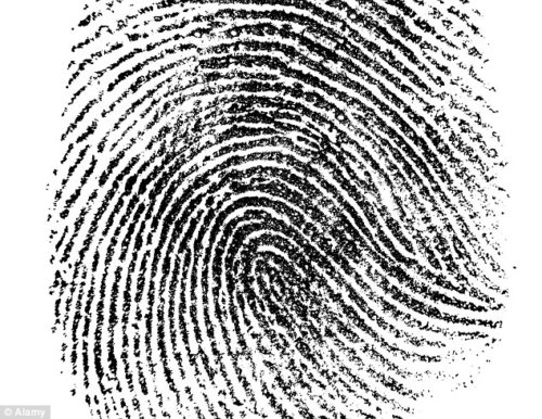 16C0B35E000005DC-0-Level_one_details_in_fingerprints_pictured_look_at_overall_patte-m-16_1443523111779