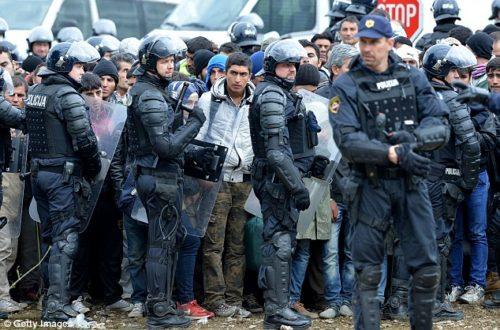 Escorted: Migrants arrive a temporary holding area after being escorted by police from the Croatian and Slovenia border.
