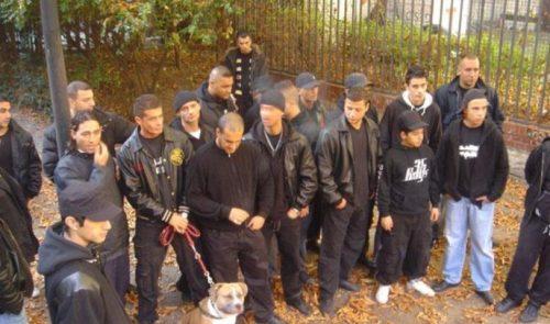 The-36-Boys-Germany-image-www.crimefiles.net_