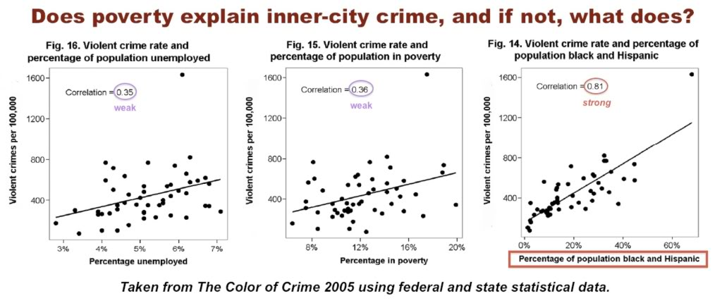 poverty and crime essays