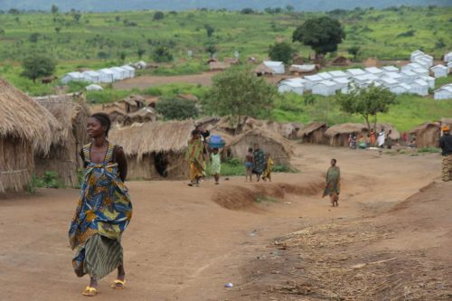 Congo scene