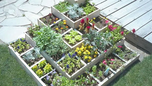 High Quality Square Foot Gardening2