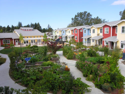 petaluma-ave-homes-cohousing-e1438923888721