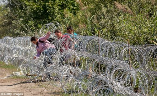 2BCE137600000578-3216339-Making_it_Three_men_jump_through_the_border_fence_between_Serbia-a-141_1440966743309