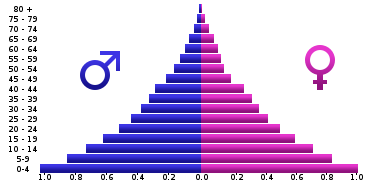 Representative Age Pyramid for an Expanding Nonwhite Race (Angolan age pyramid, 2005)