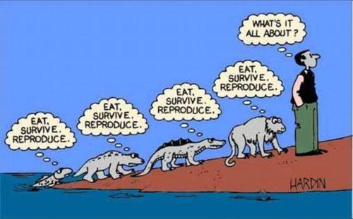 evolution_cartoon1
