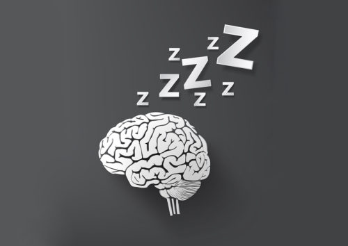 vectorof sleep concept with brain.